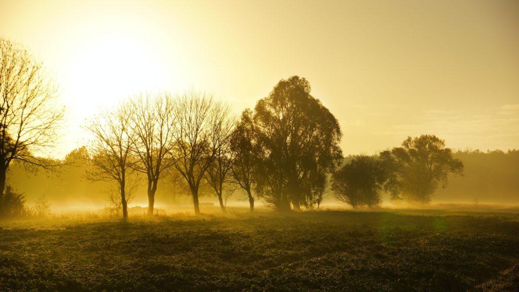 Landschaft in Nordrhein-Westfalen
